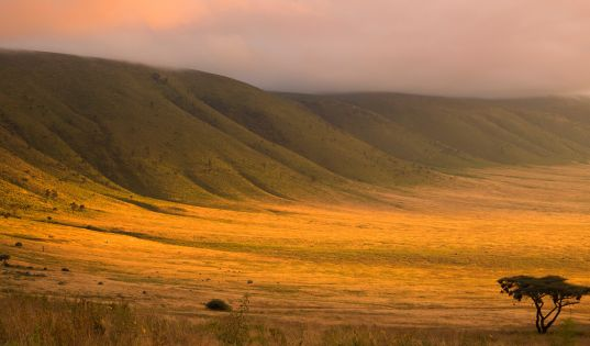 Sun rise over the Ngorongoro Crater as we descend from our home on the rim, Entamanu Ngorongoro.