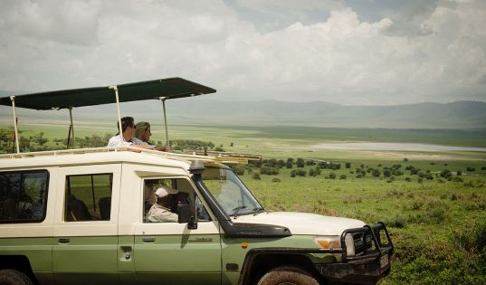 Morning forays onto the Ngorongoro Crater floor hold the promise of epic views and incredible wildlife.