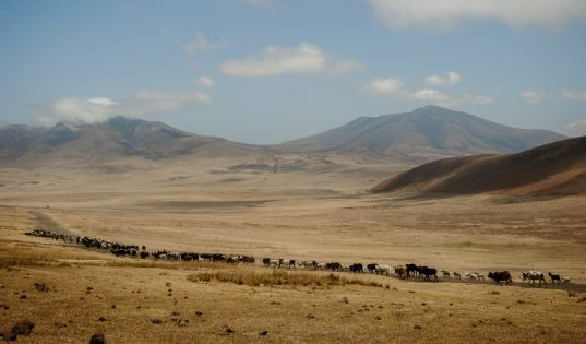 Entamanu Ngorongoro is surrounded by the ancient ebb and flow of Maasai pastoralist life.