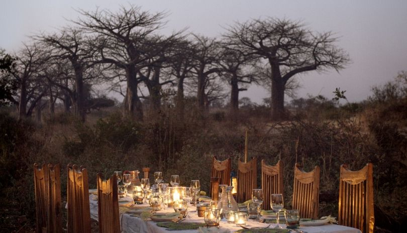 Dining with a backdrop of baobabs at Kigelia Ruaha.