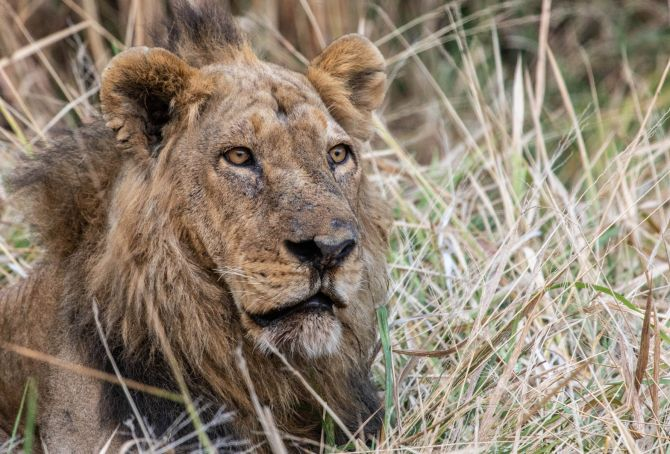 Launching the Katavi Summer Internships with LCMO