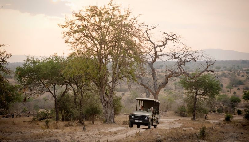 Game drives in the Selous Game Reserve.