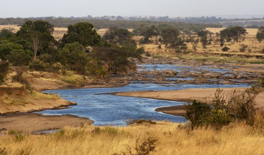 The Mara River in the Northern Serengeti.