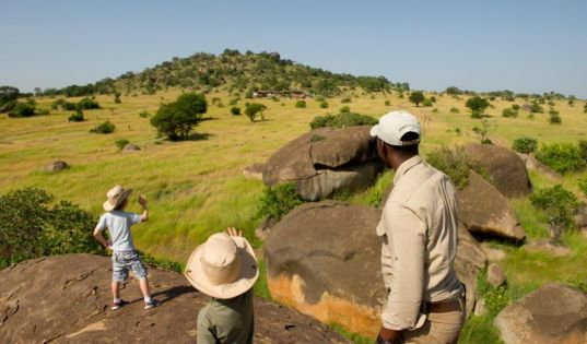 The Serengeti as your playground, under the watchful eye of our expert Mkombe's House guides.