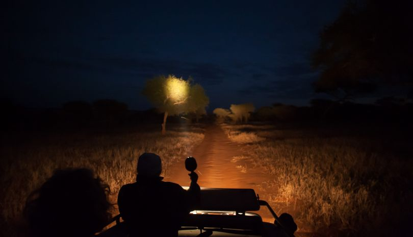 Night drives from Kuro Tarangire.