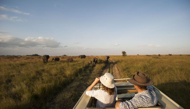 Game drives in the Serengeti National Park.