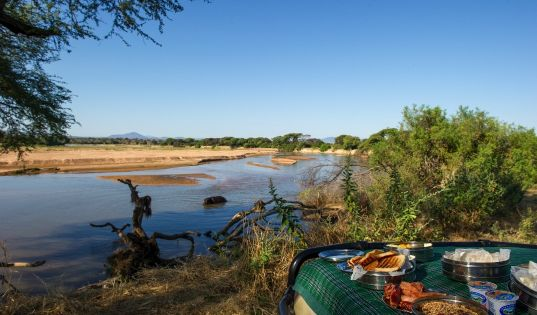 The Rufiji River does not always flow, but when it does, it is a magnet for wildlife and a very welcome breakfast spot