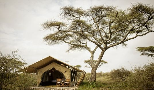 Only six spacious safari tents make up our pioneering little mobile camp, Serengeti Safari Camp.