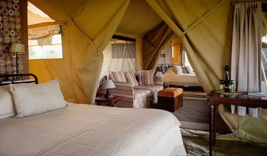 The family tent at Serengeti Safari Camp, with two full size en suite tents and adjoining living area; perfect for families with children.